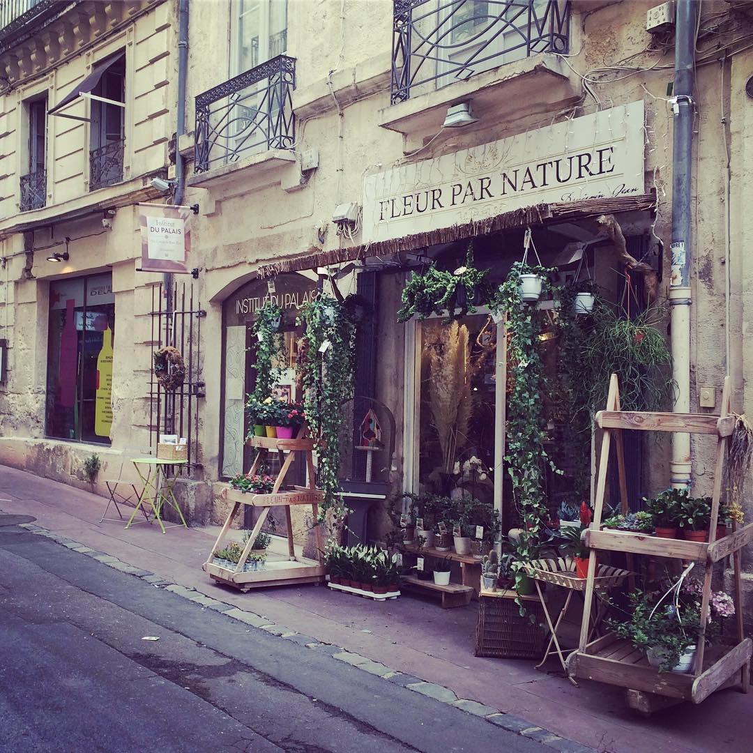 Location de chambre chez l'habitant à Montpellier hébergement en famille
