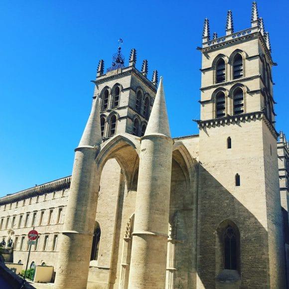 cathédrale Montpellier centre ville écusson